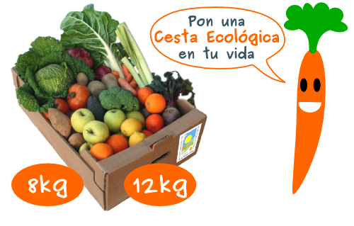 Ecological markets. The luxury in the kitchen.